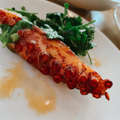 Boston Food & Hotel Guide